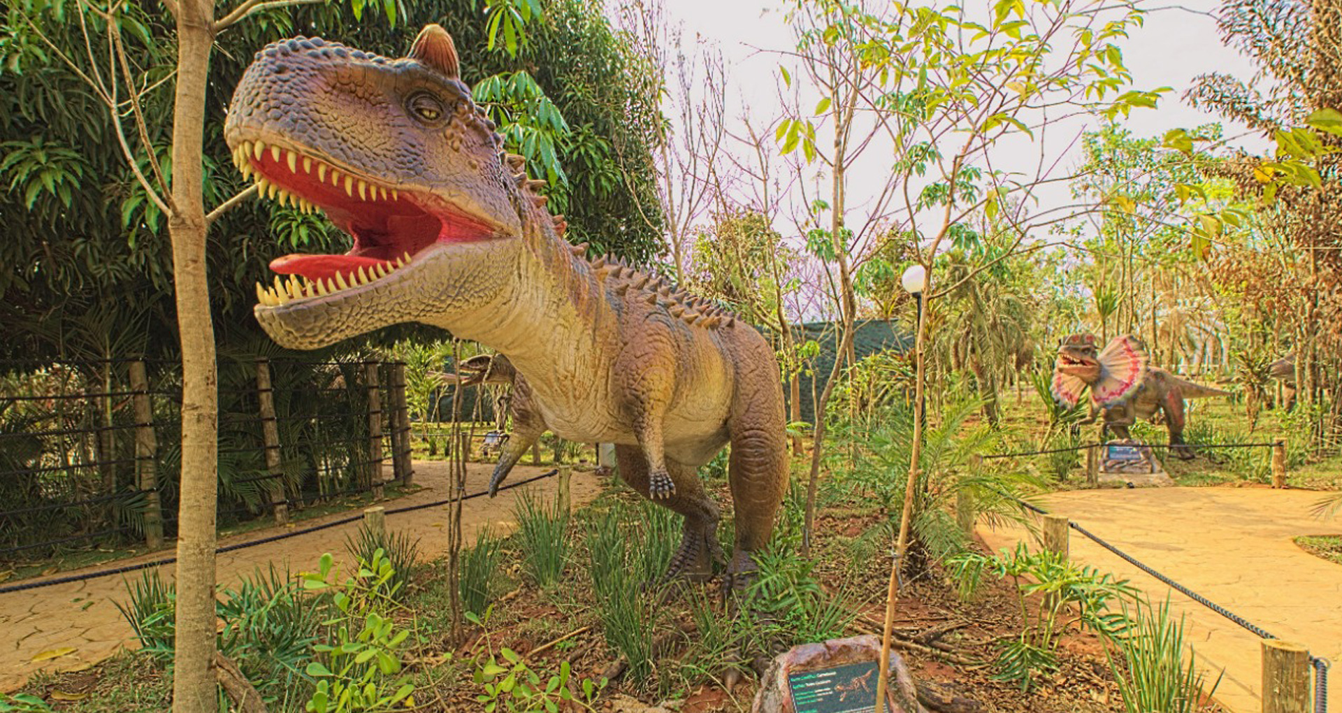 Vale dos Dinossauros Olímpia